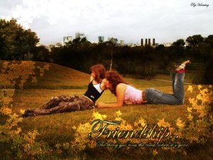 Friendship Message | Love, Emotional, Traditional & Friendship SHAYARI
